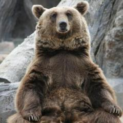 Grandpaw Grizzly